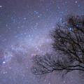 八ヶ岳 満天の星