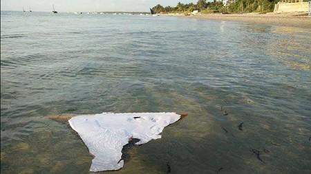 mh370-mozambique-debris