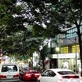 Photos: ヤマハミュージック東京 渋谷店 道玄坂