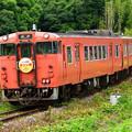 Photos: ビール列車
