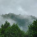 写真: 雨上がりの竹田城址(山城遺構)