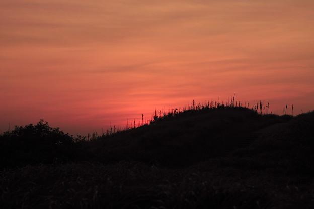 ユウスゲの丘の朝焼け その2