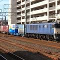 Photos: 3074レ EF64 1019+コキ