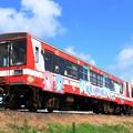 Photos: 132D 鹿島臨海鉄道6000形6005+6019