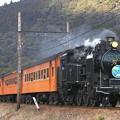 1004レ C11 190+旧型客車 5両