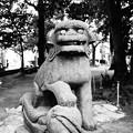北野神社 (中野区中野)