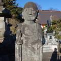 Photos: 真光寺 (群馬県渋川市渋川)
