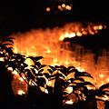 写真: 追悼3.11  ぬくもりの河