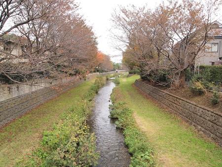 野川 (1)