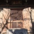 Photos: 1月_深大寺 8