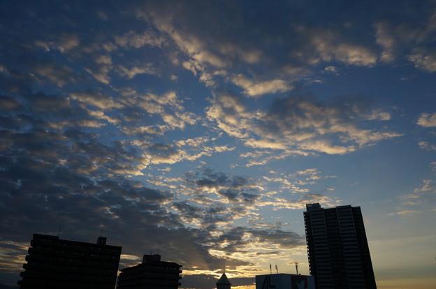 Photos: DSC07830
