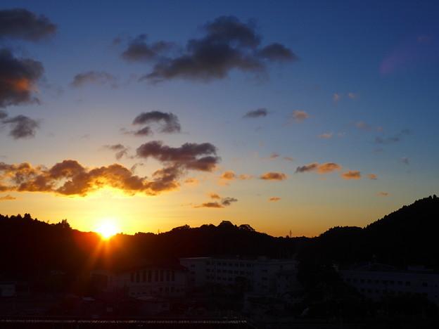 Photos: 朝陽の季節