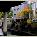 写真: 常盤橋公園の紅葉