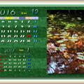 Photos: 2016年12月カレンダー