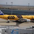 写真: 黄色い翼