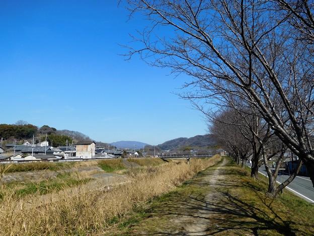 竜田川(左・三室山、右・矢田丘陵、中央奥・生駒山)