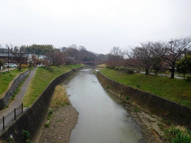 竜田川・竜田大橋の上から下流を望む