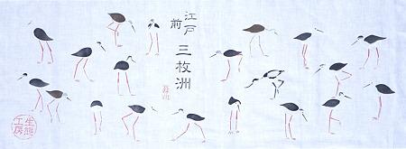 セイタカシギ 百態