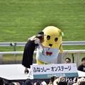 Photos: _DSC9752