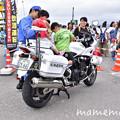 Photos: _DSC7814