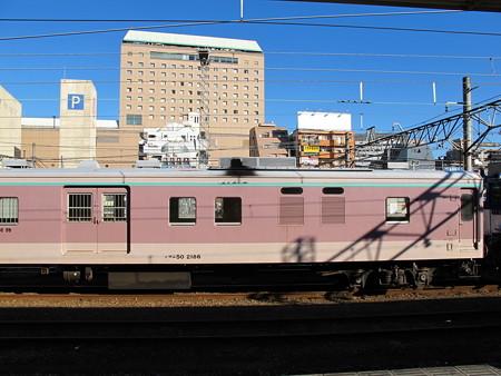 EF64-1010+マニ50-2186(八王子駅)9