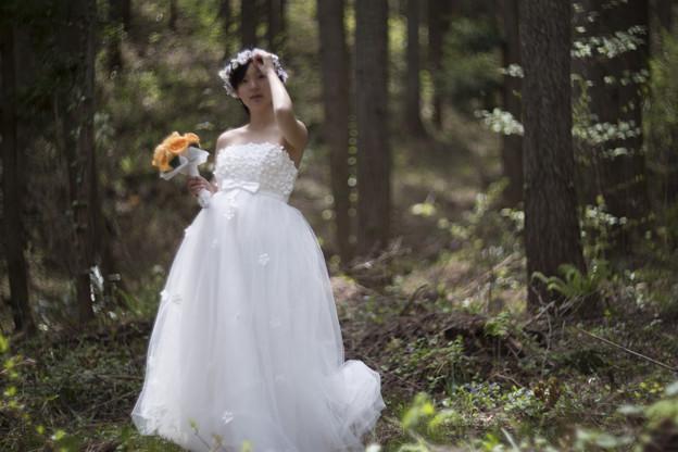森の中の花嫁