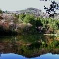 雲仙絹笠山