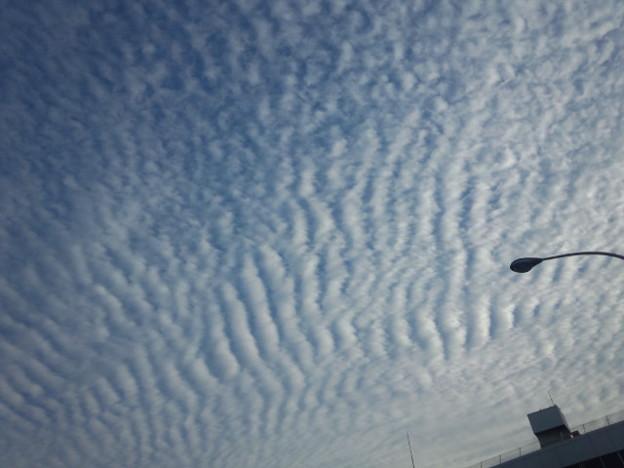 宏観云々抜きにしても、ちょっと身の毛よだった。