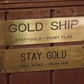 ゴールドシップ ステイゴールドの居た馬房に