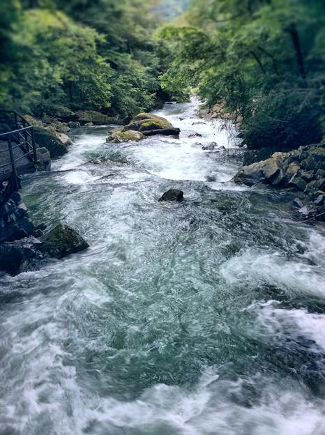 飛騨小坂の渓流