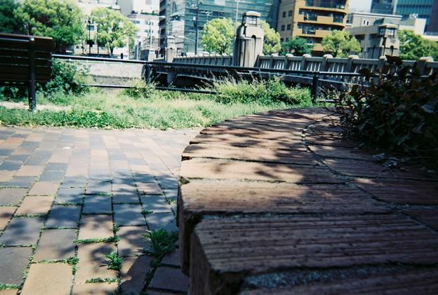 Photos: のんびり♪