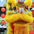 写真: 金正男の毒殺を見た? Chinese southern lion at KLIA