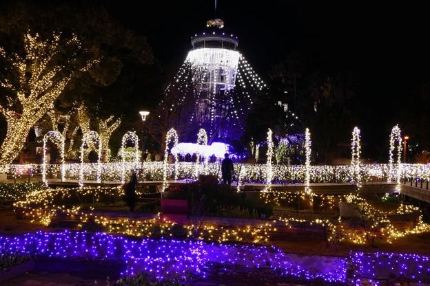 2016/12/24・・・江の島シーキャンドルNo.11