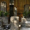 写真: 川柳の創始者「柄井川柳」の墓 01092016