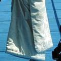写真: 娘の結婚08 前撮り(白無垢)