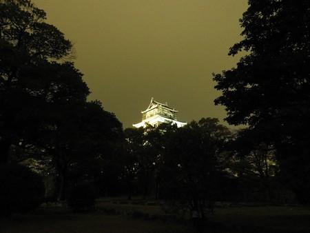 広島城ライトアップ02 「春暁や城あらはるる松の上」(子規)