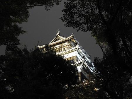 広島城ライトアップ06