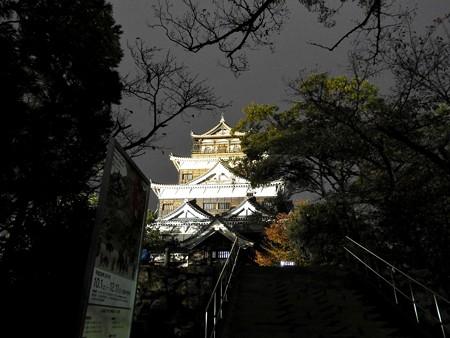 広島城ライトアップ07