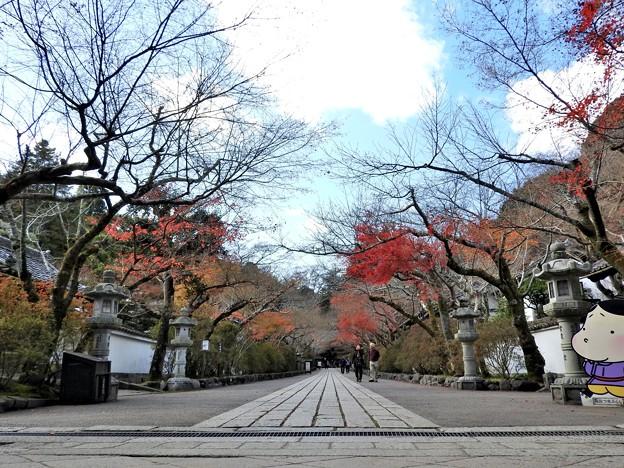 写真: 石山寺12 参道