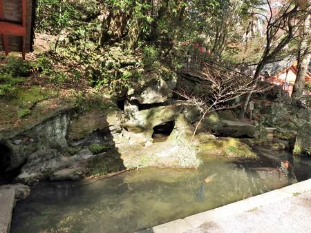 石山寺18 天平の池