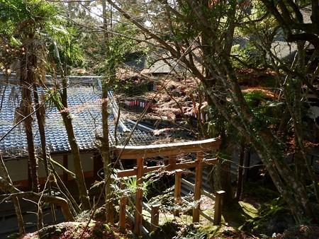 石山寺52 三十八所権現社3 厳島神社と同じ鳥居の形