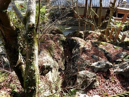 石山寺53 三十八所権現社4 鳥居の横に下まで続く大きな割れ目