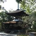 写真: 石山寺63 日本最古の多宝塔(元画像)