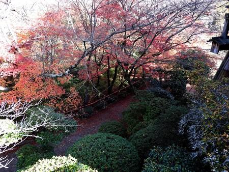 石山寺82 月見亭から見下ろす