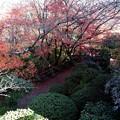 写真: 石山寺82 月見亭から見下ろす