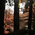 写真: 石山寺88 紅葉01
