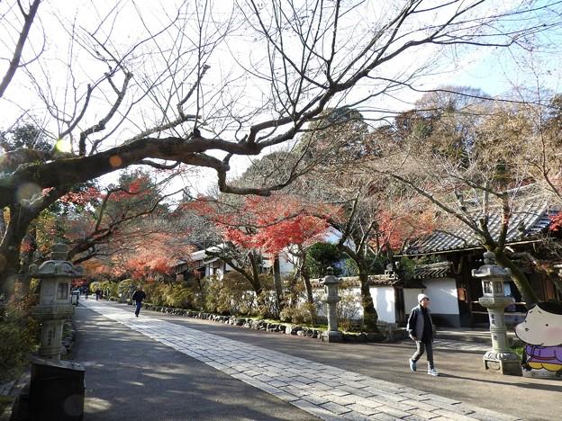 写真: 石山寺125 帰りの参道5