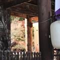 写真: 石山寺127 帰りの参道7