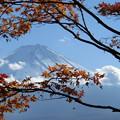 Photos: 富士山と紅葉
