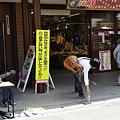 Photos: _DSC1617